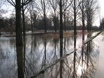überschwemmter Randbereich der Straße