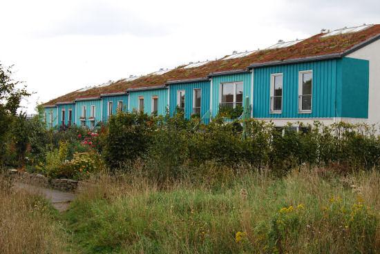 Grasdachreihenhäuser am Sticksfeld