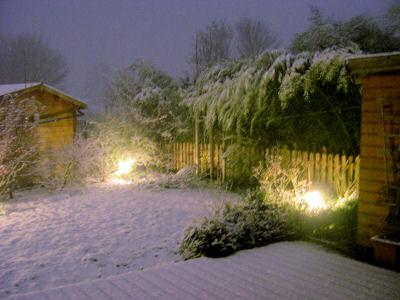 Garten abends im Schnee