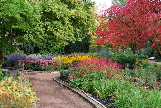 Beete mit Herbststauden und -blumen